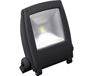 Backpack LED Flood Light