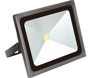 Ordinary LED Flood Light